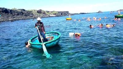 Lặn ngắm san hồ đảo Bé