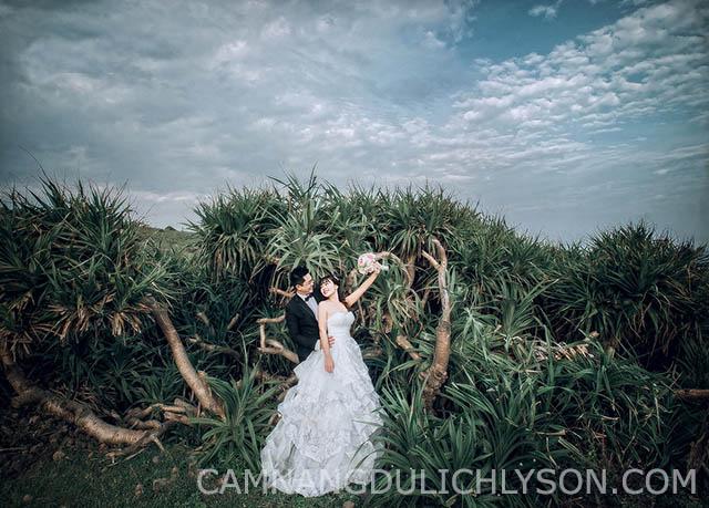 Ảnh chụp trên đồi đảo Lý Sơn. (Tu Art)