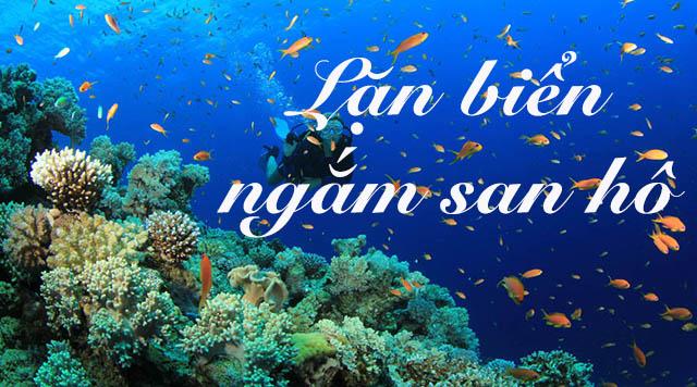 Khám phá lòng đại dương