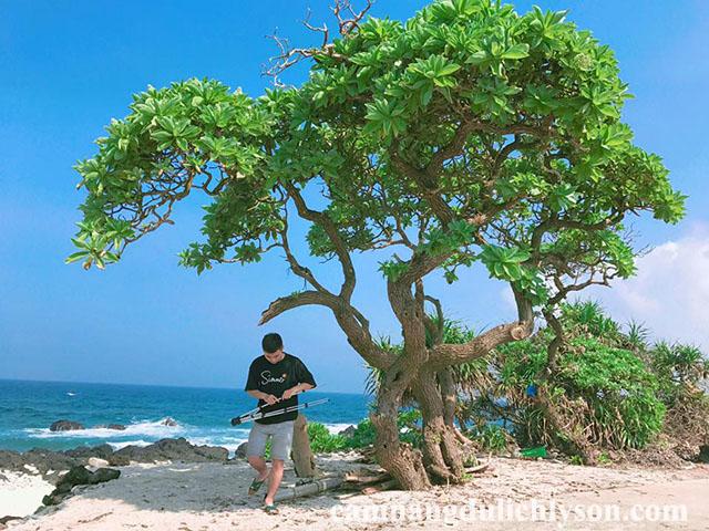 Cảnh đẹp ở mọi nơi trên đảo Lý Sơn