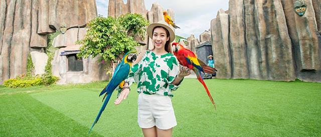 Công viên Safari với nhiều động vật quý hiếm