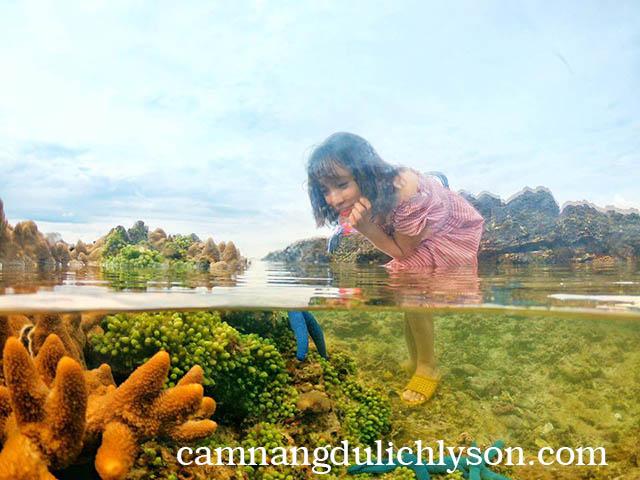 Nước trong veo trên Đảo Bé