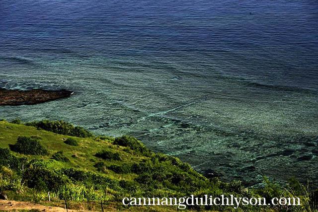 Thiên nhiên ở Lý Sơn vào mùa thu trở nên trong veo và xanh hơn