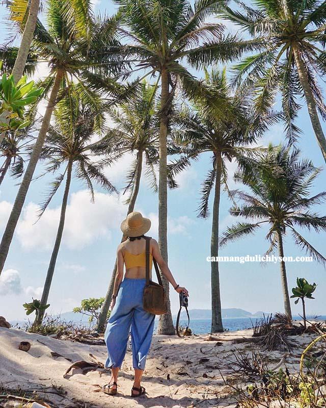 Hàng dừa ở Bãi Ngang