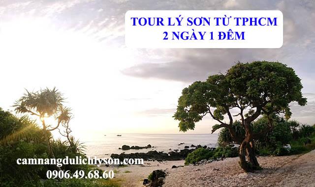 Tour Lý Sơn từ TPHCM 2 ngày 1 đêm